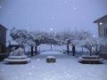 neve-08-02-2012-7