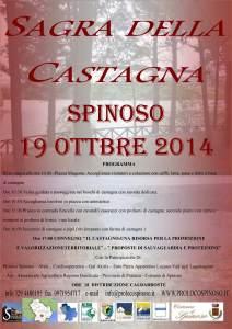 2014 CASTAGNA3-2