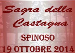 castagna 14